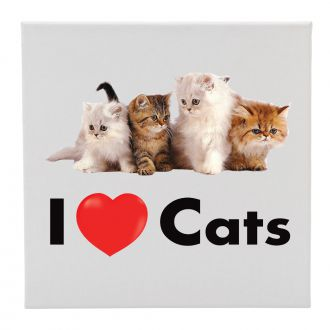 I Love (heart) Cats - 12